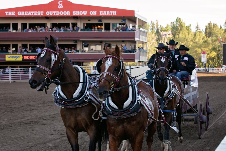 Alberta Board Meeting and Stampede Events